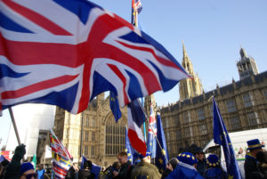 Image: Brexit protesters at Westminster