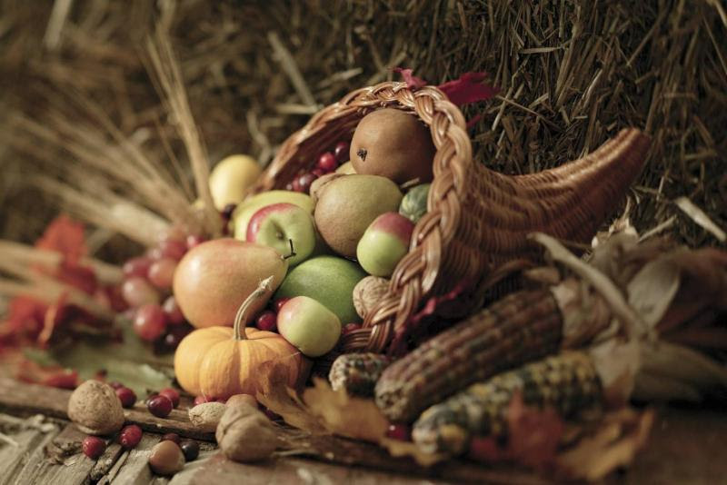 Wishing you and yours a joyful and blessed Thanksgiving